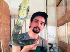 Russische vlogger sterft op livestream aan slangenbeet