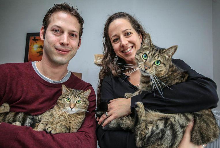 Arne en Birgit Verbeke openen Kuro Neko (Japans voor 'de Zwarte Kat'), waar je met een kat op schoot een drankje kan nuttigen.