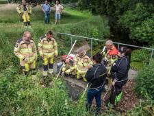 Brandweer schakelt Waterschap in om kuikens naar veiligheid te spoelen