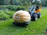 Megapompoen van 500 kilo, maar is hij de zwaarste?
