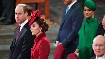 """Prins Harry wordt zijn hele leven al behandeld als nutteloze 'reserve': """"De schaduw van William zal hem blijven achtervolgen"""""""