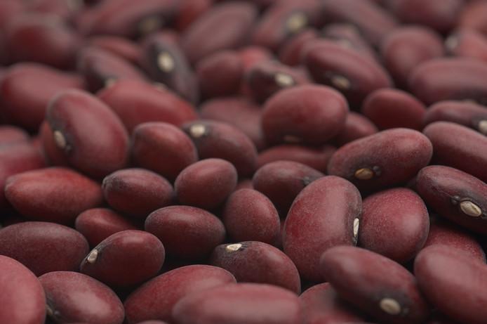 De meeste bruine bonen komen uit Zeeuws-Vlaanderen.