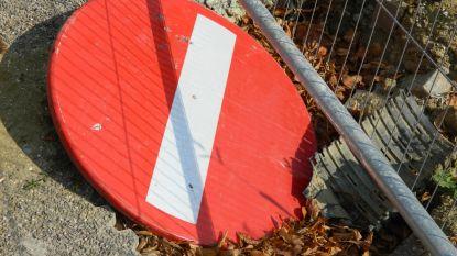 Haantjen in Belzele krijgt nieuwe rijweg