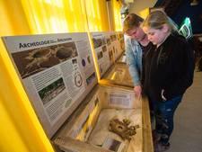 Prehistorie leeft in achtertuintjes van Apeldoorn Zuid