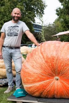 Hoe kweek je een giga pompoen van 600 kilo? Deelnemers aan het NK weten het