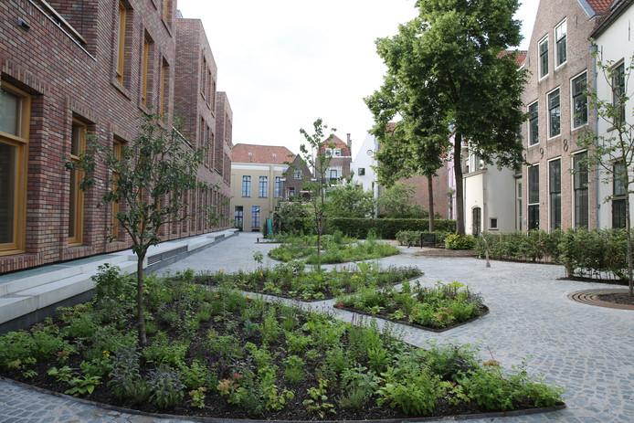 Tussen het stadhuis en de woningen aan de Assenstraat is een park aangelegd.