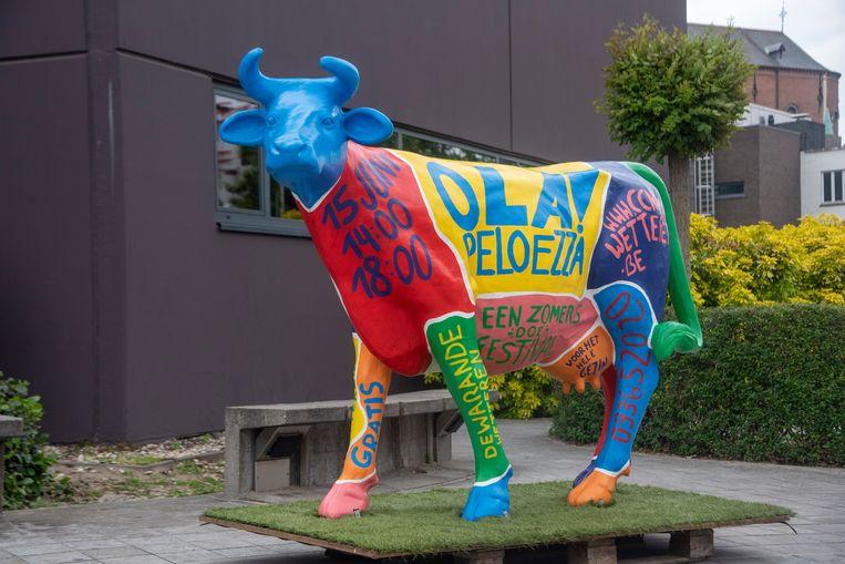 De Ola!Peloezza-koe kondigt het festival aan in Wetteren.