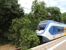 Treinverkeer Tiel-Geldermalsen weer op gang