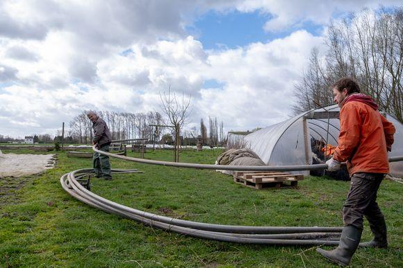 PUURS De serres van 't Lekkerland gingen tijdens de storm tegen de vlakte, maandag werd gestart met de heropbouw