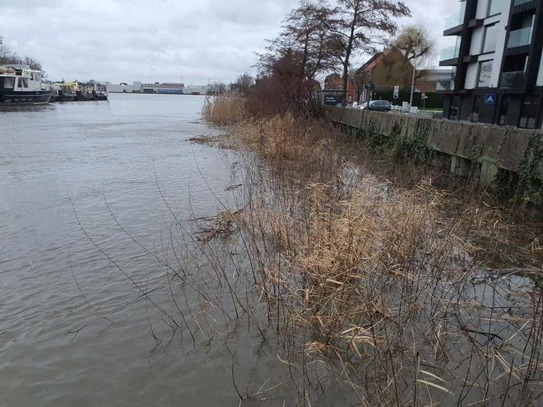 De Schelde kwam tot net onder het oppervlak van de dijken.