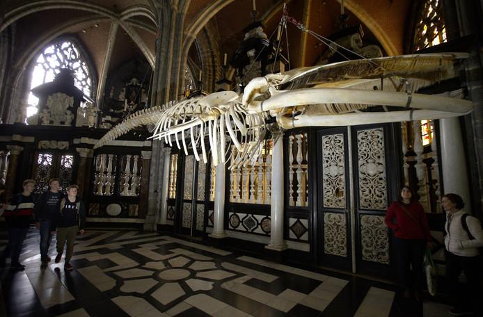 De voorbije jaren kon men al proeven van de aparte aanpak van het nieuwe museum, onder andere met de installatie van vinvis Leo in de Sint-Baafskathedraal