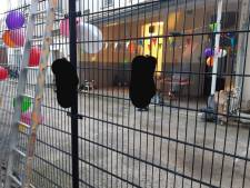 Agenten maken einde aan tuinfeestje in Arnhems centrum: feestvierders slaan op de vlucht