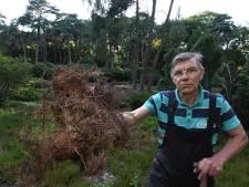 Zijn hangjongeren de oplossing om de dorre heidetuin in Driebergen weer te laten opleven?