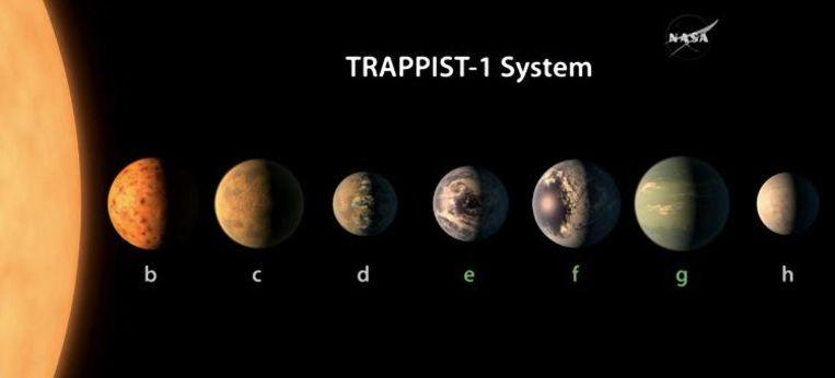 De zeven exoplaneten die rond de Trappist-ster draaien.