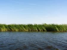 Kanoërs Biesbosch te water door voorbijrazende speedboot: 'Een bewuste, asociale actie'