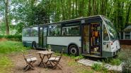 Na het grote succes van vorige veiling: opnieuw oude bussen De Lijn te koop