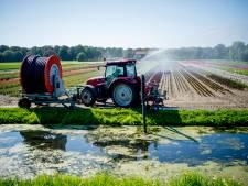 Waterschap heft verbod op: water uit sloot pompen mag weer