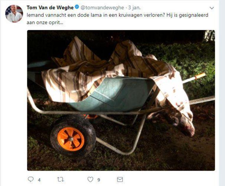 De 'lama' lag dood in een kruiwagen op de Beukenlaan.