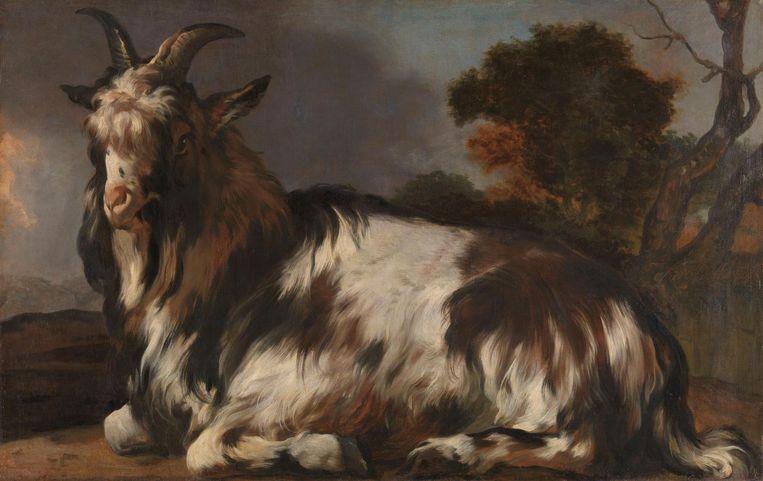 Liggende Bok, Jan Baptist Weenix, circa 1645-1660 Beeld Rijksmuseum