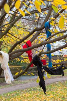 Mysterieuze weldoeners, die winterjassen in bomen hingen, zijn gevonden