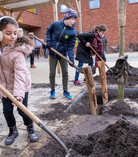 Bomen brengen schaduw en speelblaadjes voor scholieren Souburgs Kroonjuweel