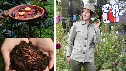 """""""Met een rotfruitschaal lok je vlinders én hou je wespen weg van je terrastafel"""": Laurence Machiels brengt leven in je tuin deze zomer"""