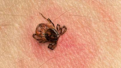 """Zette VS teken in als biologisch wapen? """"Miljoenen mensen die lijden aan ziekte van Lyme hebben recht op de waarheid"""""""