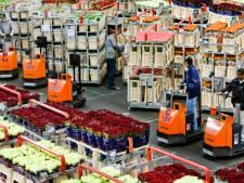 Exporteurs vrezen chaos: uren wachten voor de grens