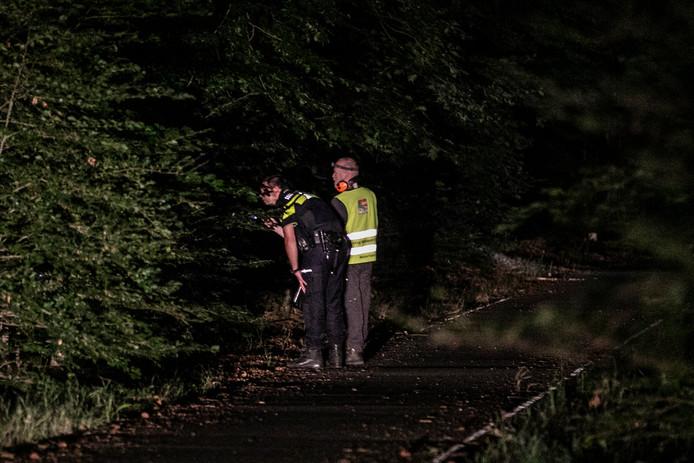 Een agent en boswachter zoeken naar een losgebroken stier bij de N224 in Ede.