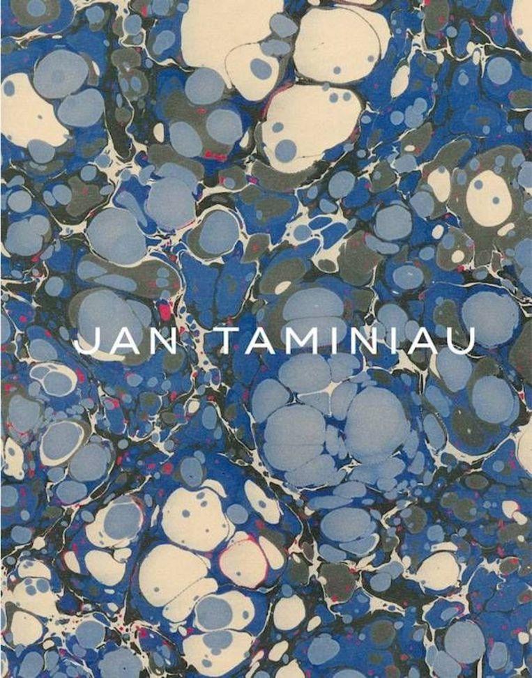 Cover van het boek dat uitkwam ter gelegenheid van de expositie 'Jan Taminiau: Reflections' in het Centraal Museum. Beeld Jan Taminiau