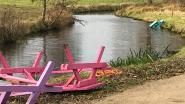 Vandalen op pad in Vlaspark: banken in beek, boekenruilkastje vernield