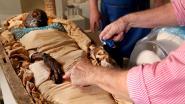 Cold case van 2.600 jaar oud opgelost: mummie Takabuti gedood met mes in de rug