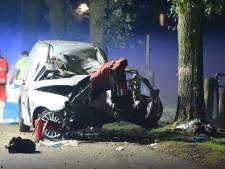 Bestuurder (34) busje overlijdt na botsing met boom in Overberg