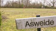 """""""Asweide omploegen: hoe respectloos!"""": heisa over plannen op begraafplaats in Sint-Niklaas"""