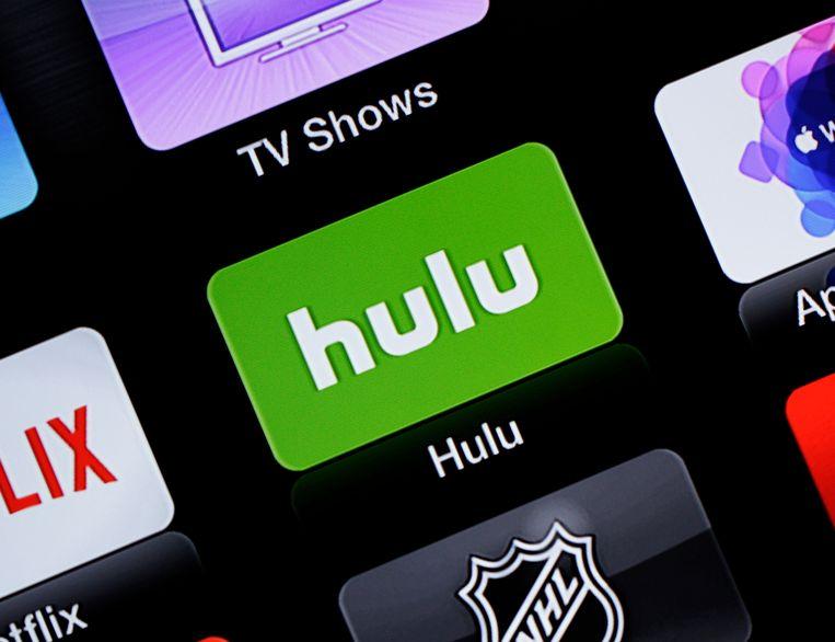 In de Verenigde Staten is Hulu een gevestigde naam.