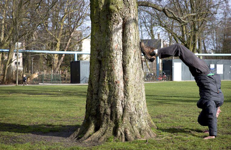 Een jongen doet een handstand tegen een boom in het Vondelpark. Beeld ANP