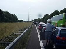 File op A27 onder Breda, drukte bij Bergen op Zoom