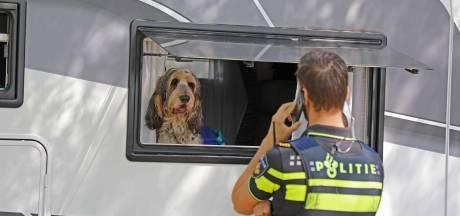 Twee honden gered uit afgesloten camper op Efteling-terrein