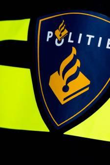 Agenten bespuugd tijdens aanhouding na vechtpartij in Waalwijk