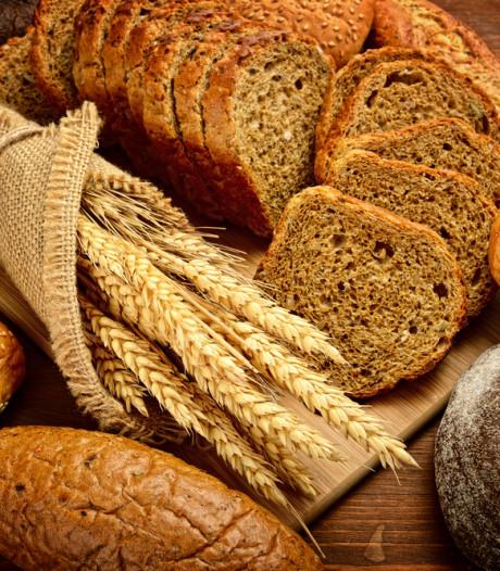 Bakkers luiden noodklok: brood gaat flink in prijs stijgen