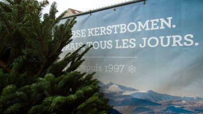 Wil je af van oude kerstboom? Op 15 januari inzameling in Kaprijke