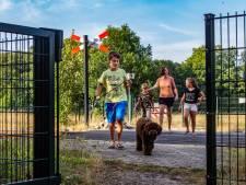 Deventer keert zich tegen afsluiting onbeveiligde overwegen door ProRail: 'Er is nog nooit een ongeluk gebeurd'