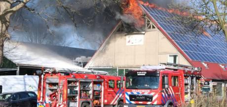 Grote brand verwoest twee schuren vol groente in Ens