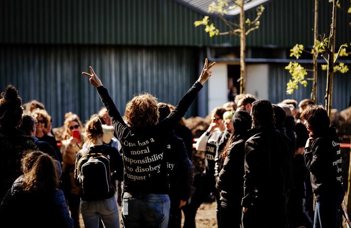 Zo'n tweehonderd activisten bezetten maandag een boerderij in het Brabantse Boxtel en drongen een stal met pas geboden biggetjes binnen.