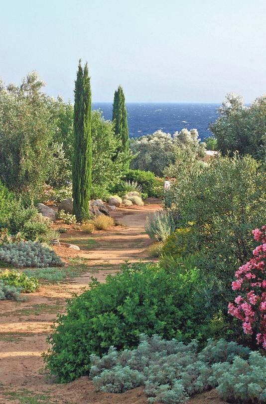 In het unieke Parc de Saleccia nabij L'Île-Rousse vind je alle mogelijke planten uit het Middellandse Zeegebied.