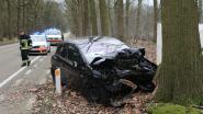 Bestuurster (54) sterft na crash tegen boom