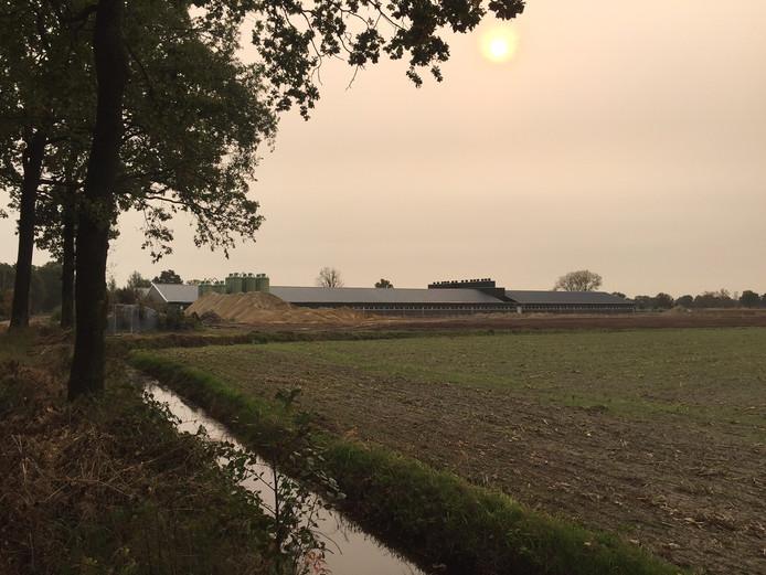 De voorbereidingen voor de bouw van de omstreden vleesvarkensstal in Diessen zijn inmiddels begonnen.