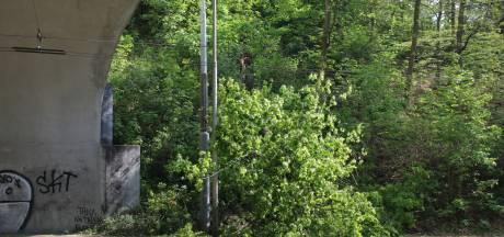 Boom valt om in Arnhem, weg afgesloten