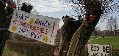 Bewoners Schansstraat Terheijden in actie tegen mogelijk verdwijnen kinderkopjes