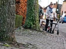 Liempde mag meepraten over kruising en voetpad Roderweg